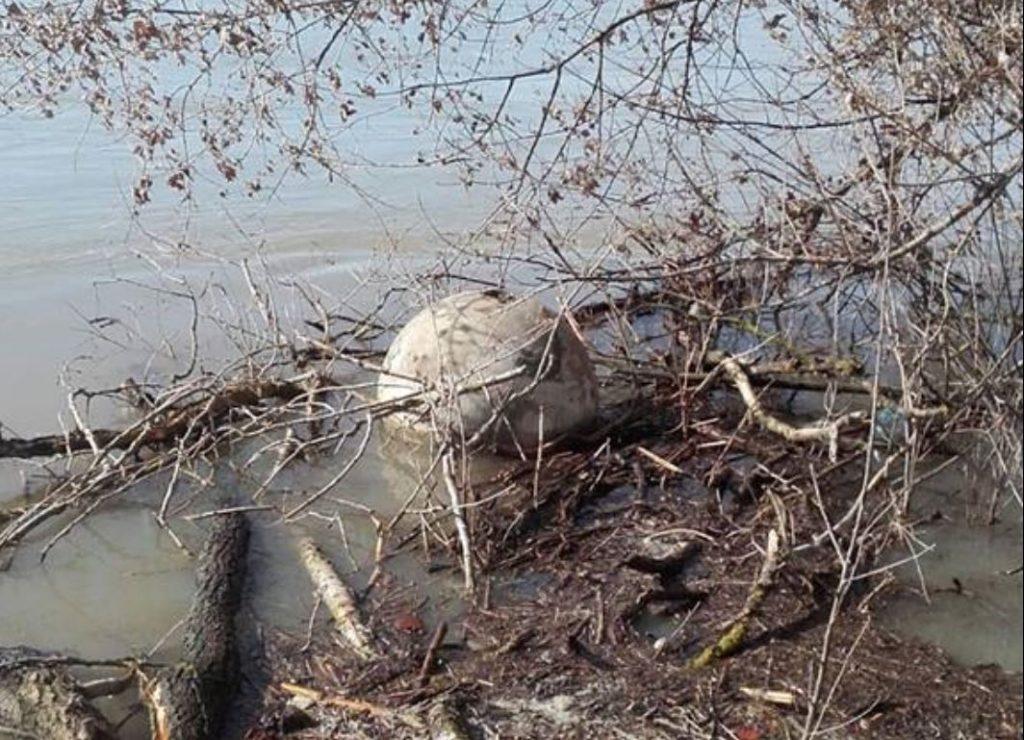 Două mine din război, plutesc pe Dunăre! Intervin scafandrii din Forţele Navale