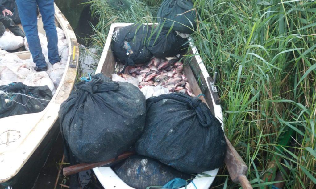 Peste 600 kg de pește și plase de pescuit cu fir textil,confiscate de polițiștii de frontieră