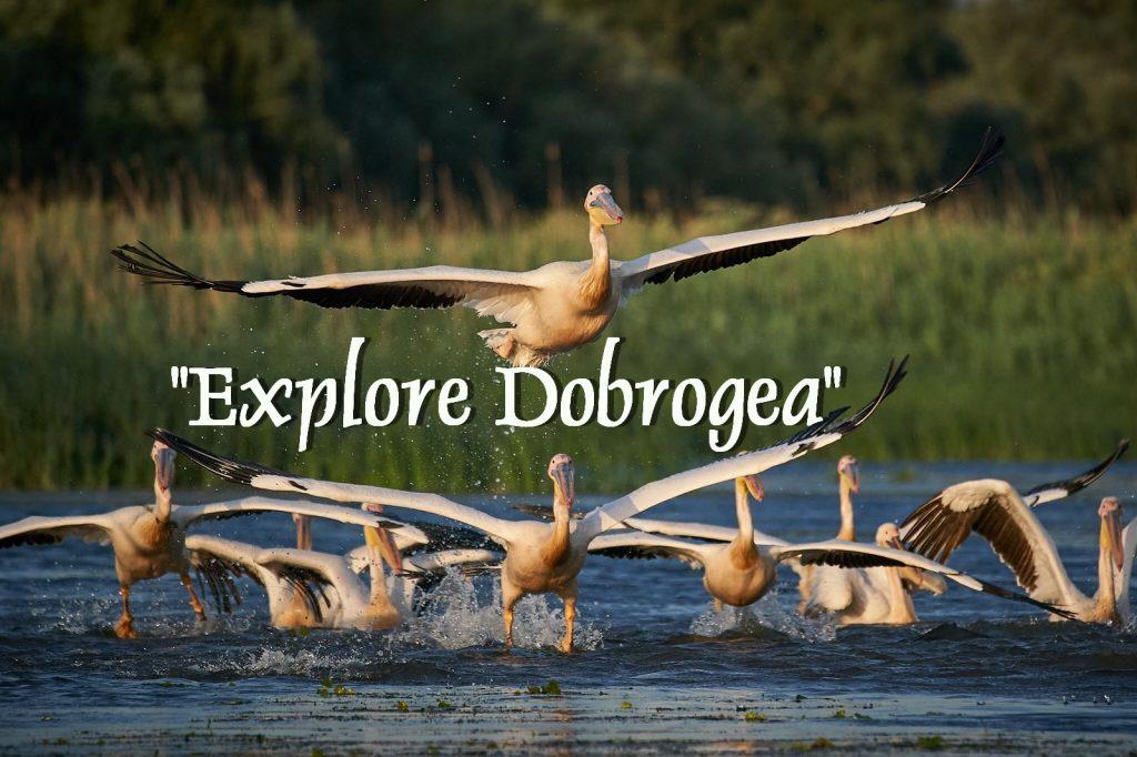 """""""Explore Dobrogea"""" - Infotrip de promovare a turismului"""