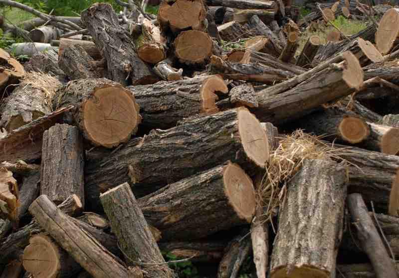 Campanie de informare publică privind achiziționarea , de către populație a lemnului de foc