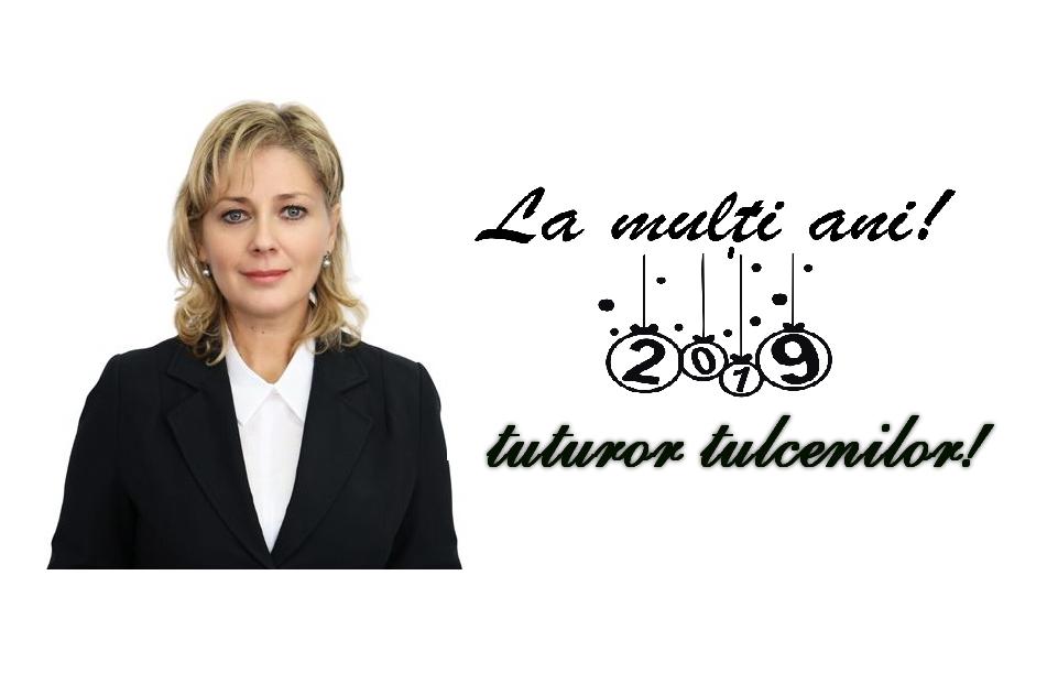 Mesajul doamnei viceprimar Andaluzia Luca, cu ocazia anului nou