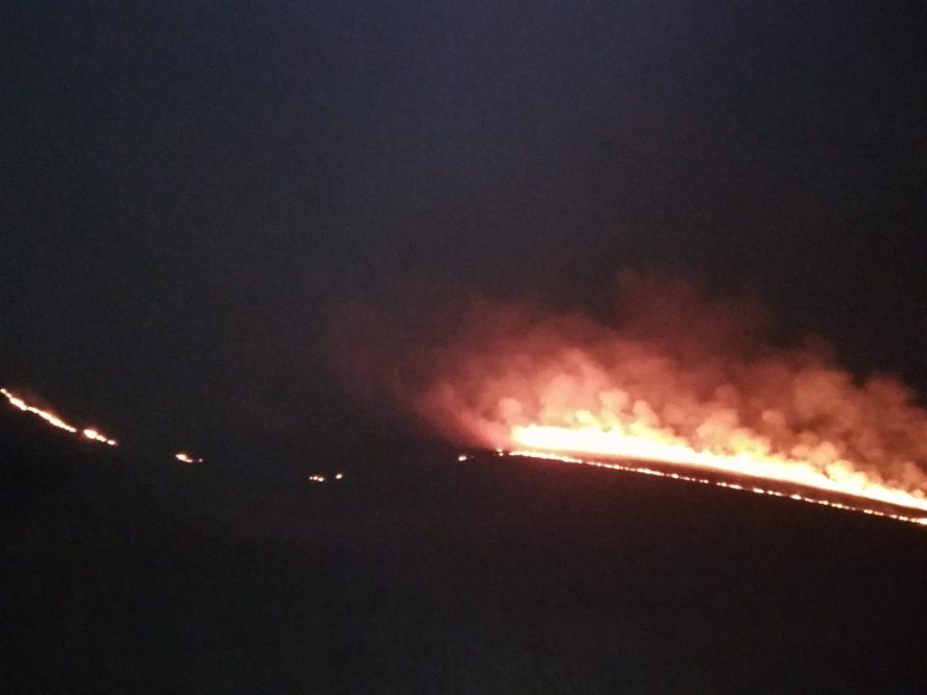Ard 15 hectare de vegetație lângă parcul eolian Agighiol. Pompierii au mai trimis două autospeciale