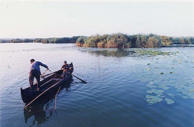 Condiții pentru practicarea activității de pescuit comercial în perimetrul RBDD în anul 2019