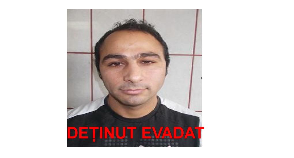 Deţinut evadat de la un punct de lucru din Tulcea