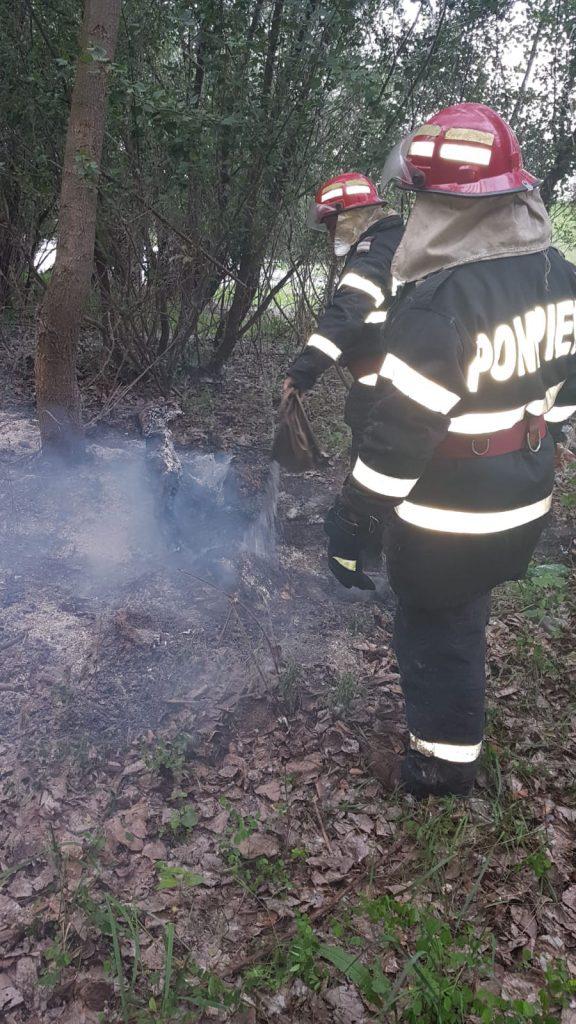 Incendiu de la puful de plop, oprit la timp de pompieri