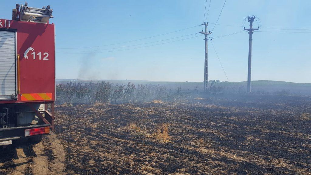 17 hectare de miriște și cultură au ars la Baia