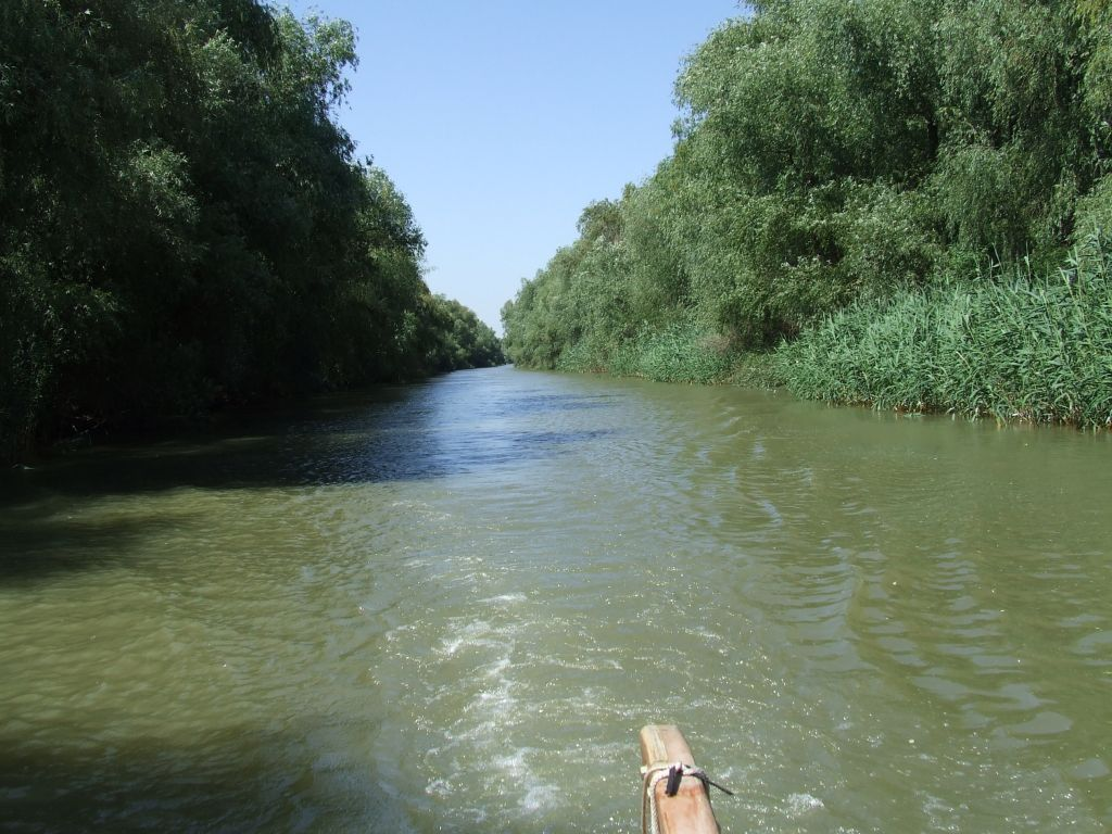 Două ambarcaţiuni cu turişti s-au ciocnit în zona Dunăvățu de Jos