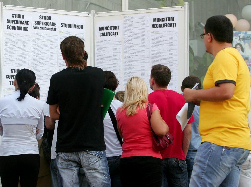 1.893 persoane şi-au găsit un loc de muncă cu sprijinul AJOFM Tulcea