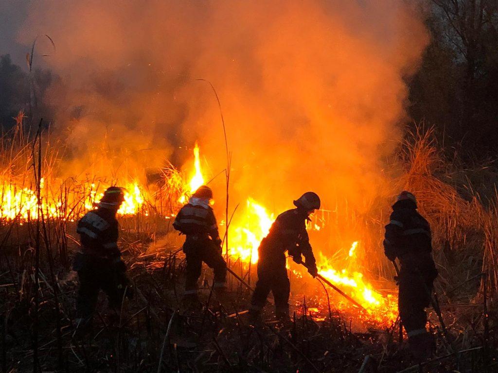 Focare de incendiu extinse pe 300 de hectare în Delta Dunării (VIDEO)
