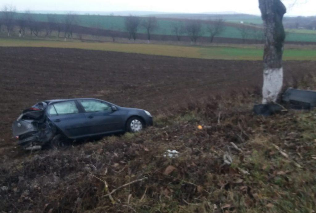 Lipsa de experienţă în condus l-a aruncat într-un copac şi de acolo, în câmp
