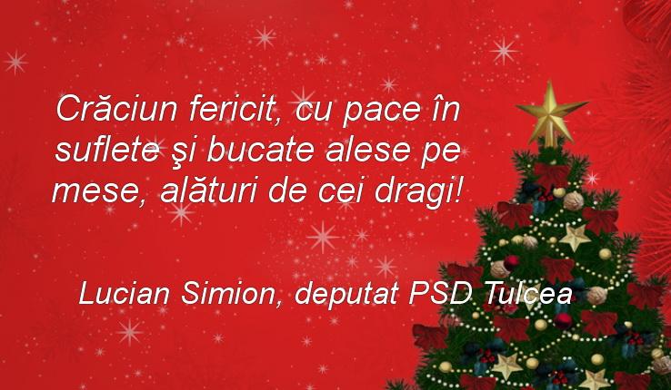 Mesajul domnului deputat Lucian Simion