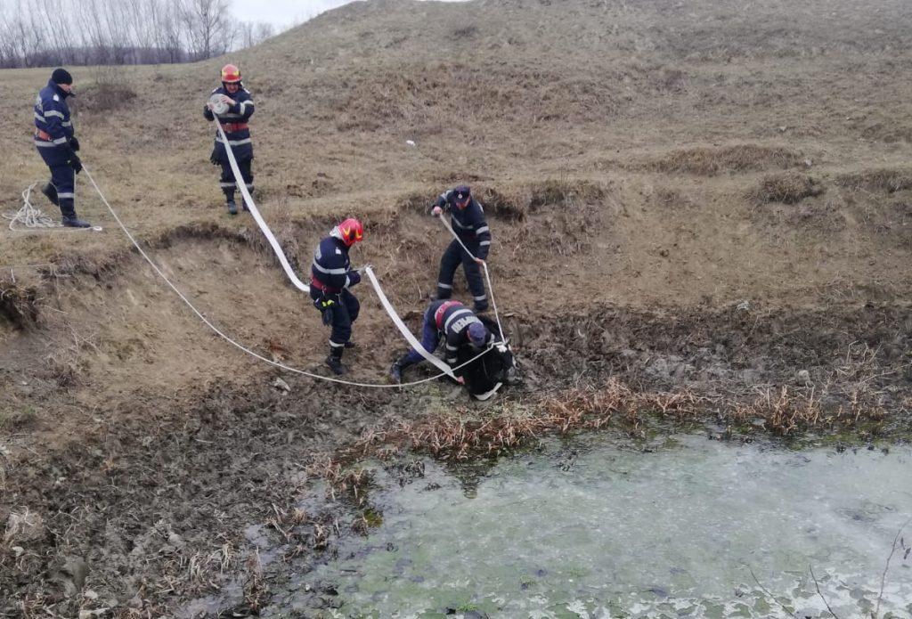 Pompierii au salvat o bovină care se scufunda în noroaie, într-o râpă