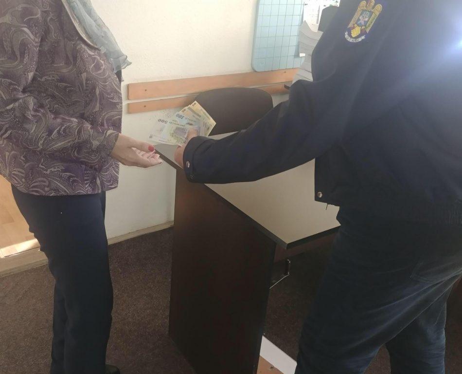 O femeie din Tulcea și-a recuperat azi 900 de lei datorită polițiștilor tulceni