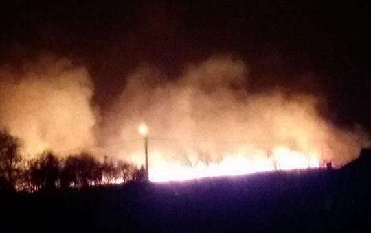 Braconierii dau foc la stuf, inconștienți de pagubele enorme pe care le produc
