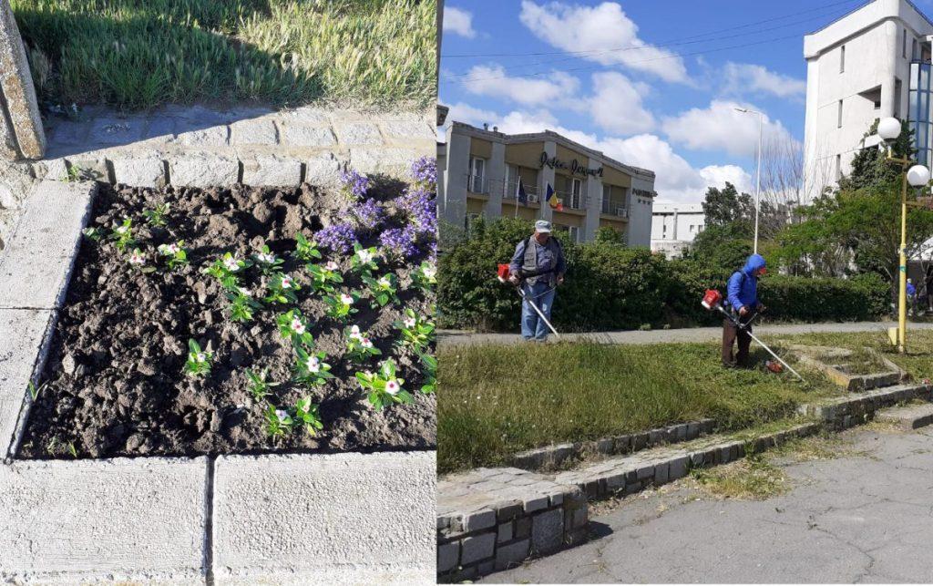Dispar florile de pe faleză, dar... bine că s-a tăiat iarba