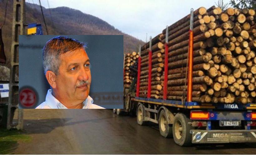S-a aprobat legea care interzice exportul de buștean. Deputatul Lucian Simion a inițiat două amendamente din prezenta lege