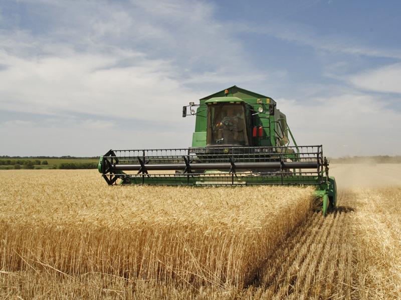 Horia Teodorescu: Pe lângă secetă, fermierii tulceni s-au confruntat și cu lipsa de interes și de viziune a Guvernului PNL (P)
