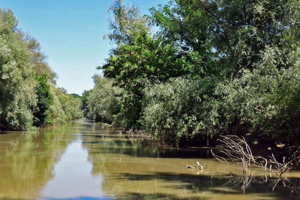 Un turist a dispărut azi noapte de pe un ponton din zona canalului Șontea