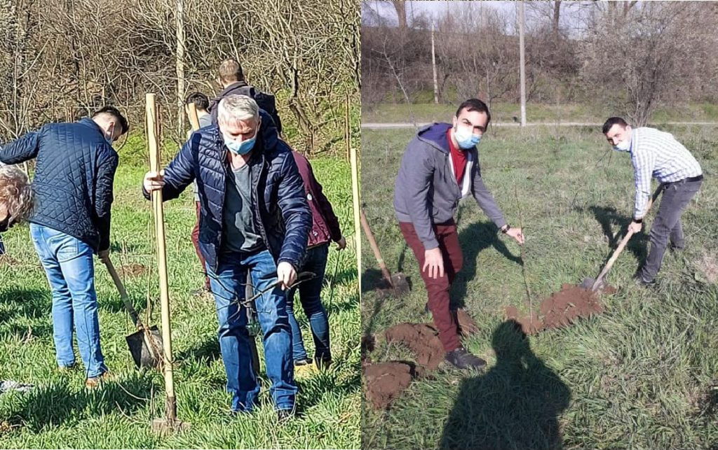 Parlamentarii USR şi colegii de partid au ajutat la plantat copaci la Bididia