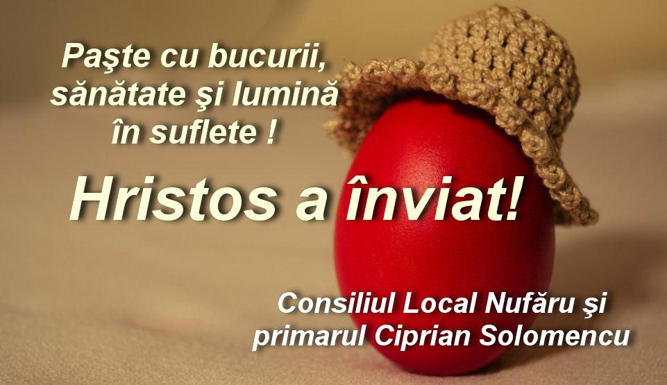 Consiliul Local şi primarul comunei Nufăru: