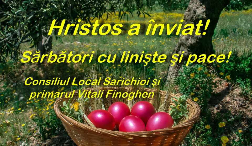 Consiliul Local şi primarul comunei Sarichioi: