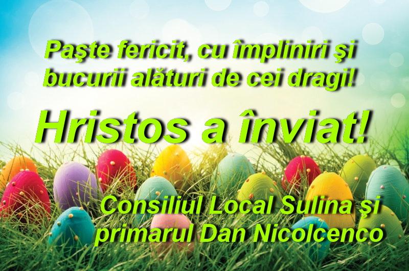 Consiliul Local şi primarul oraşului Sulina: