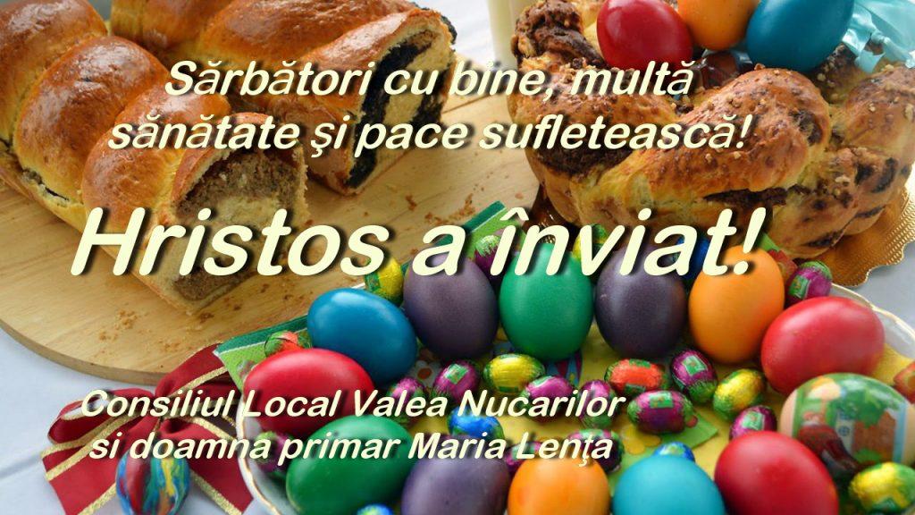 Consiliul Local şi Primăria comunei Valea Nucarilor: