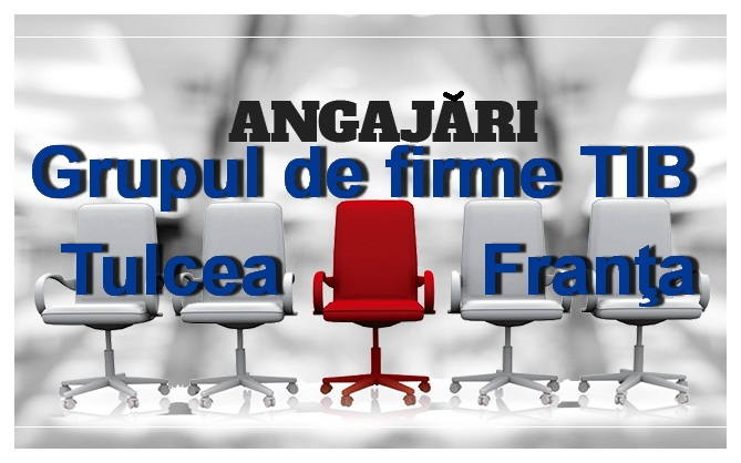 Grupul de firme TIB recrutează personal calificat pentru Tulcea şi Franţa