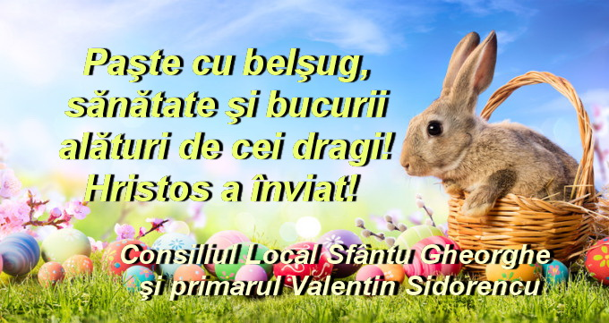 Consiliul Local şi primarul comunei Sfântu Gheorghe: