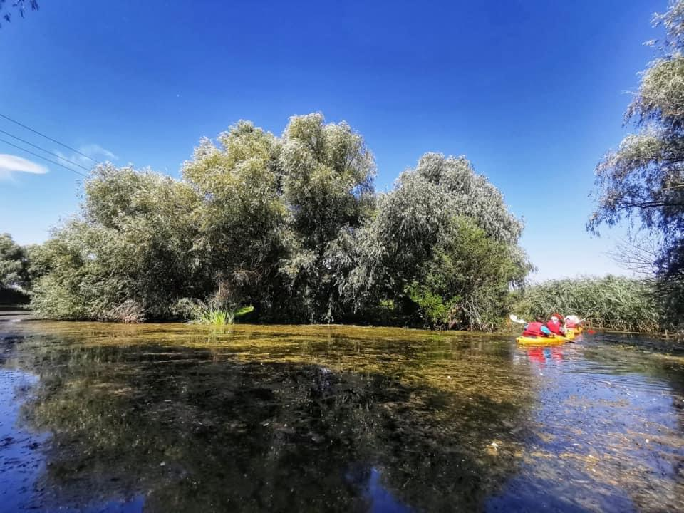 """""""Excursiile de o zi în Delta Dunării sunt un produs turistic toxic pentru natură!"""""""
